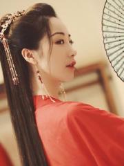 公主的锦瑟年华