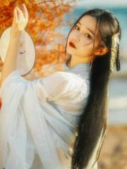 姚雪箬轩辕龙锦为男女主角小说烽火江山美人情在线阅读