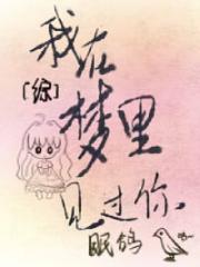 爱丽丝为男女主角小说我在梦里见过你[综]在线阅读